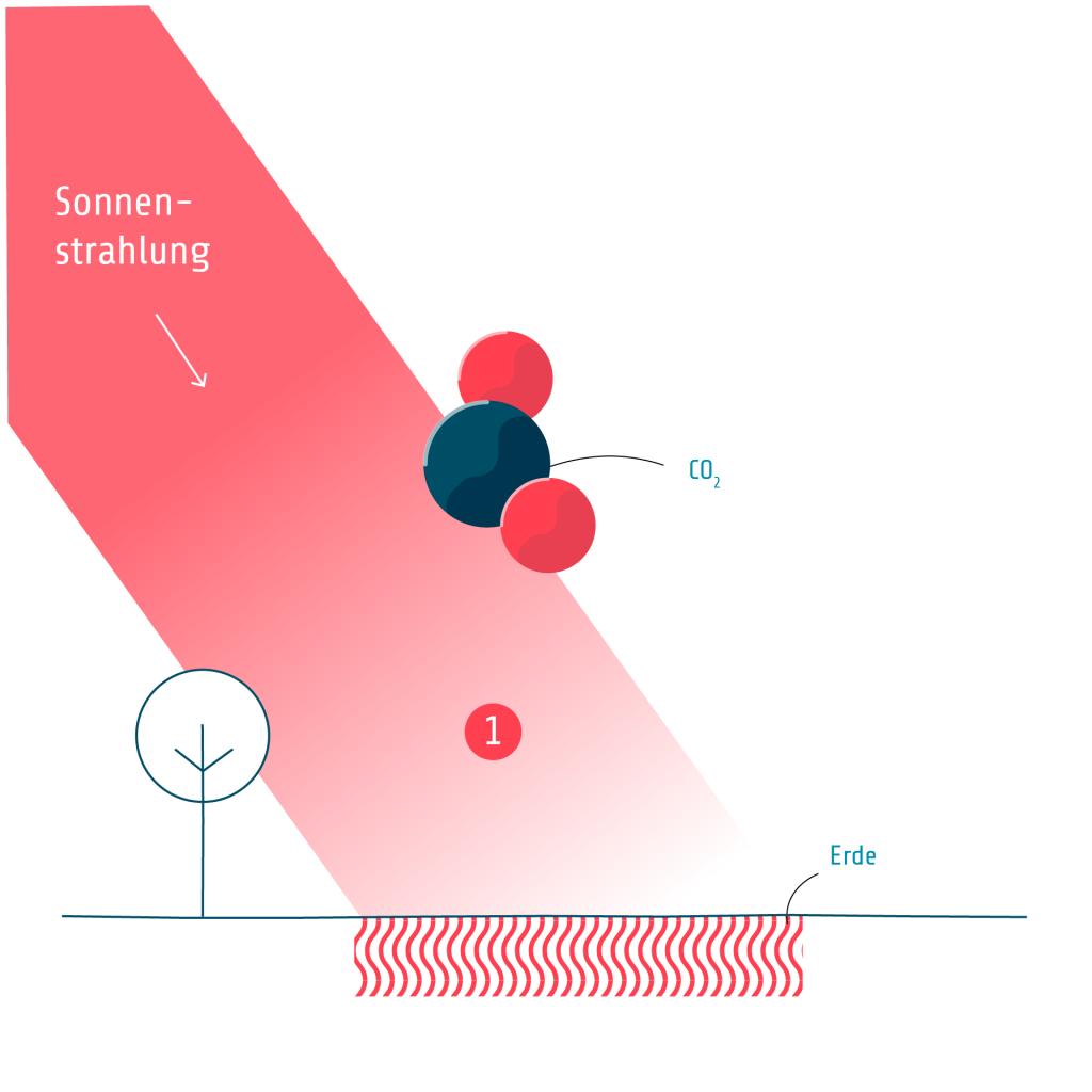 T7 Kohlendioxid Erläuterung 1
