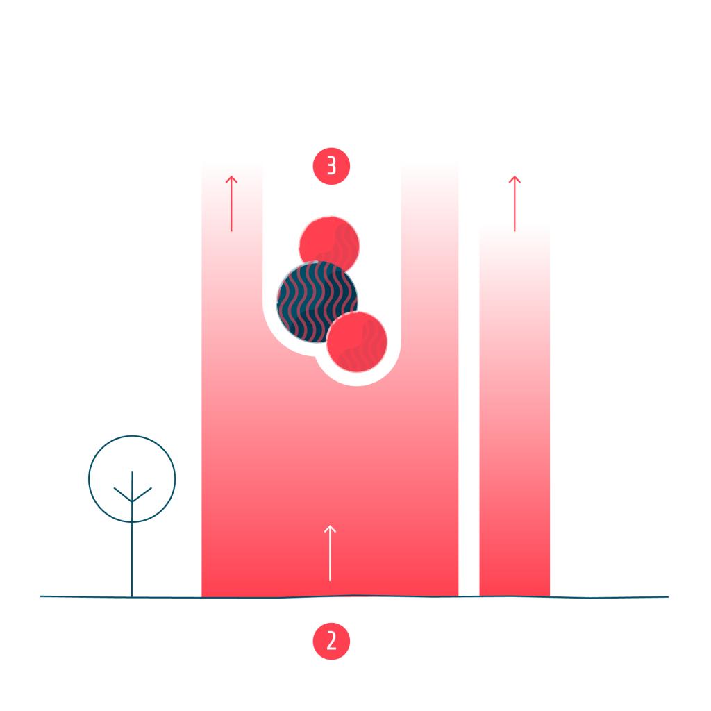 T7 Kohlendioxid Erläuterung 2