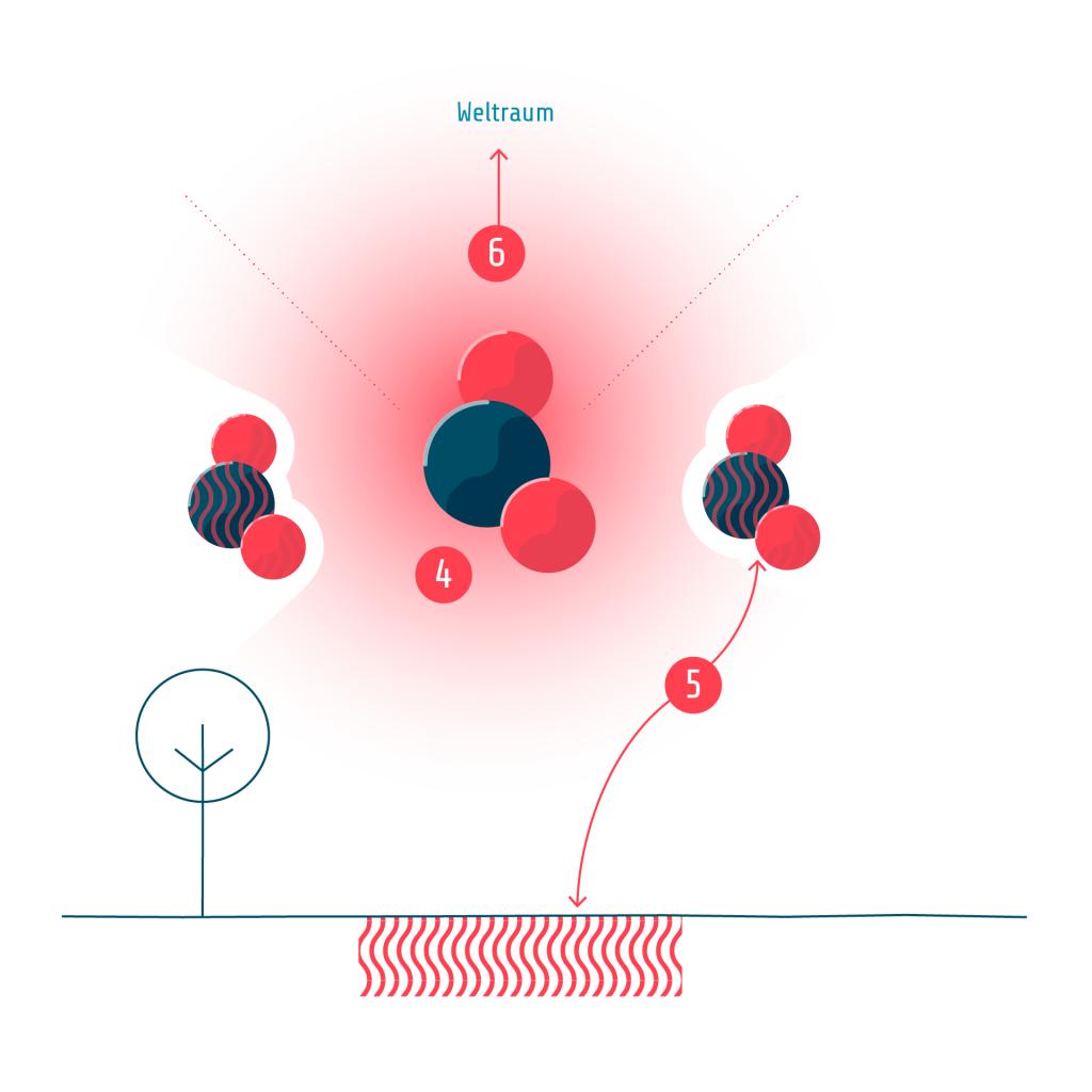 T7 Kohlendioxid Erläuterung 3