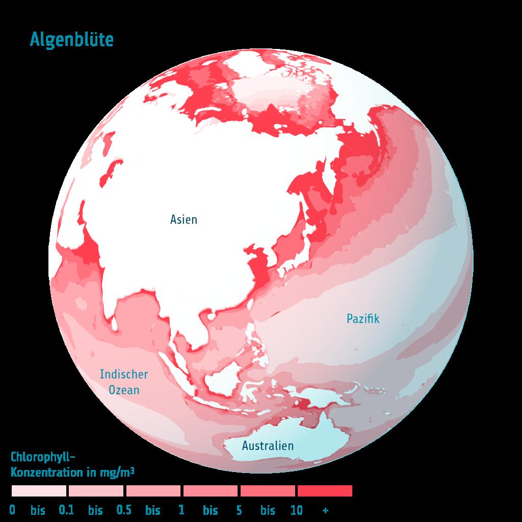 Algen Ind Ozean Pazifik