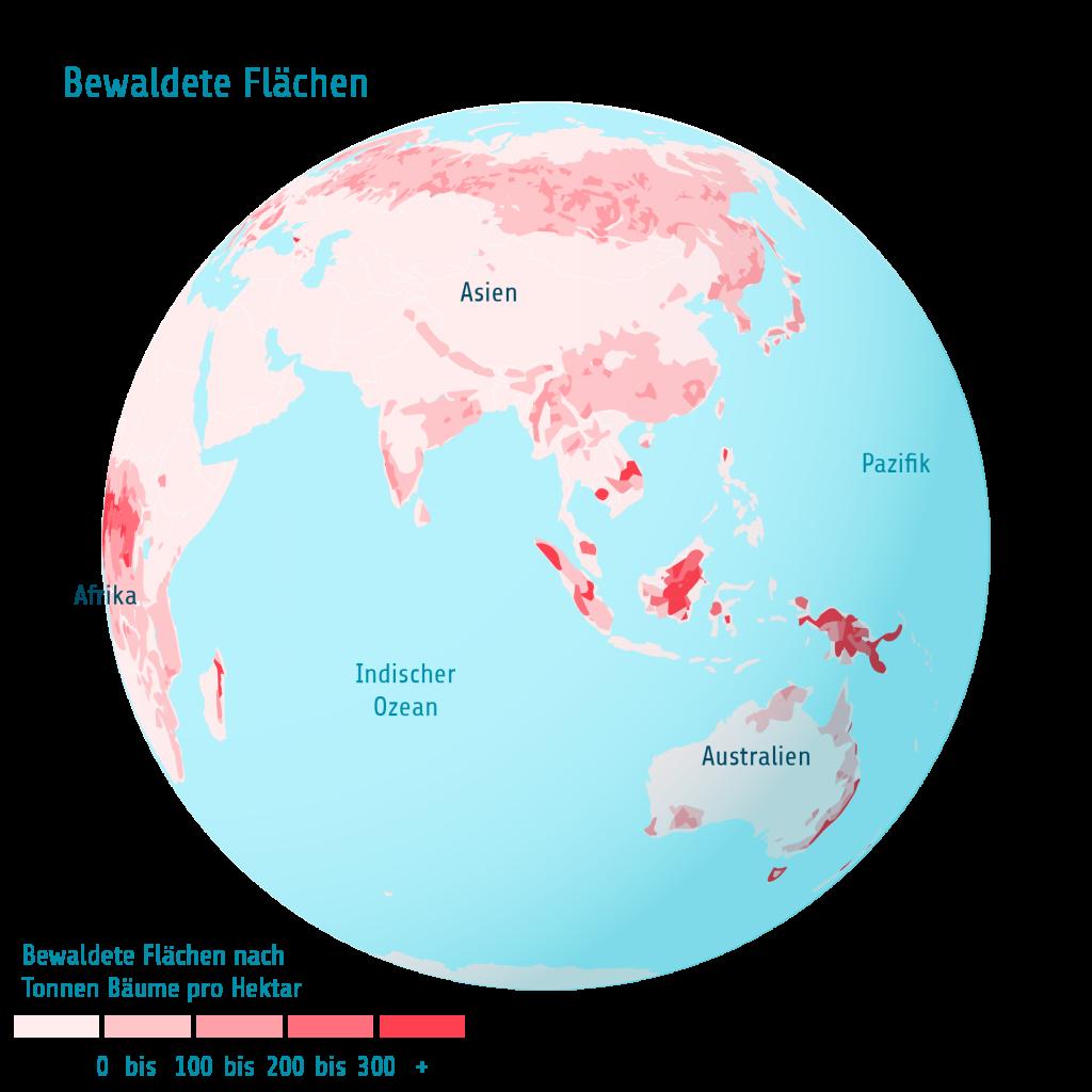 Bewaldete Flächen Ind Ozean Pazifik