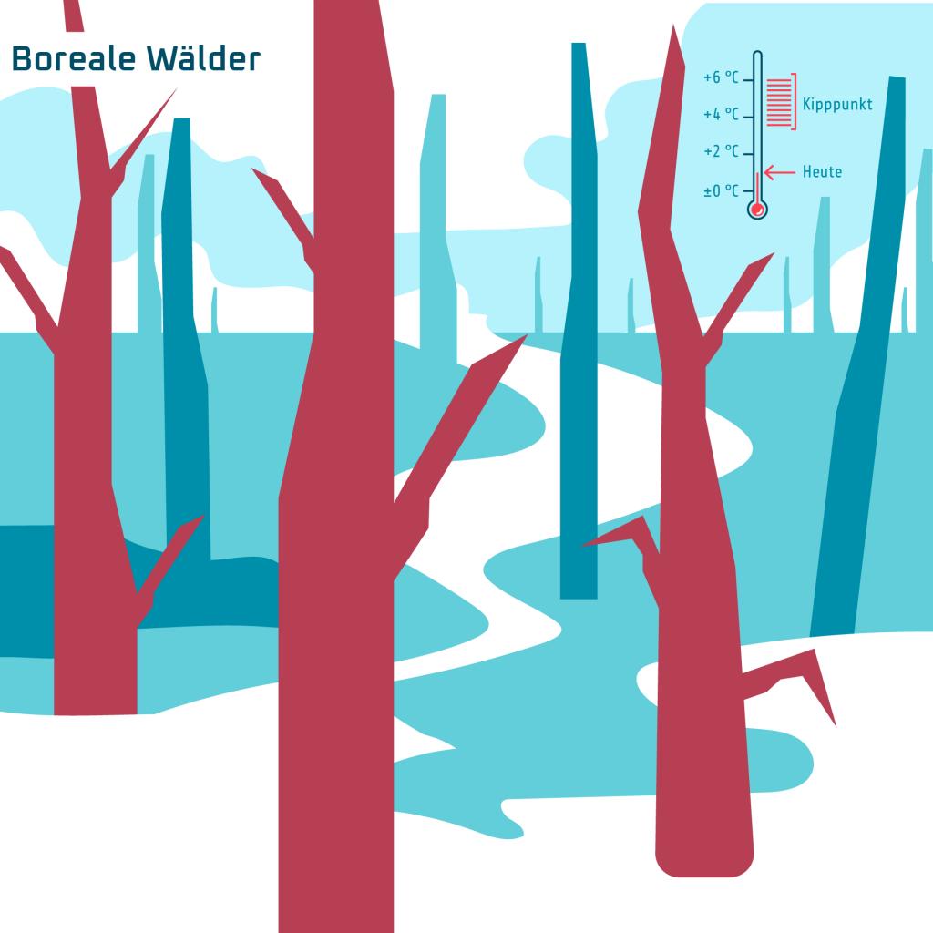 Boreale Wälder
